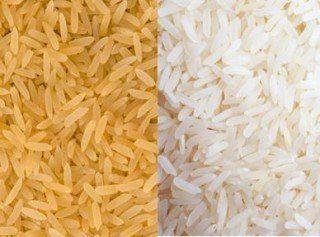 Arroz parboilizado e arroz polido