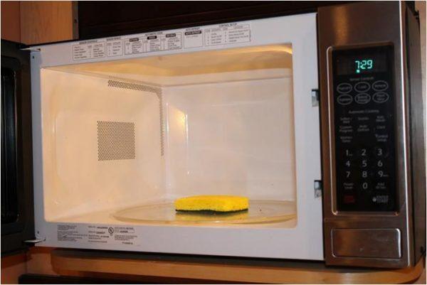 Como evitar a contaminação cruzada: desenfete a esponja no microondas.