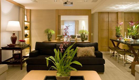 Plantas na decoração da sala