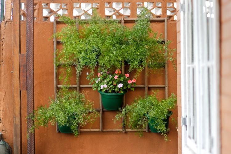 Como montar um jardim vertical: dicas pr?ticas! Fa?a voc? ...