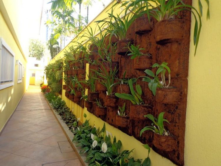 jardim vertical com fibra de coco
