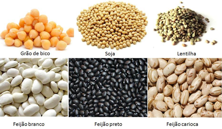 Alimentos ricos em cálcio e sem lactose